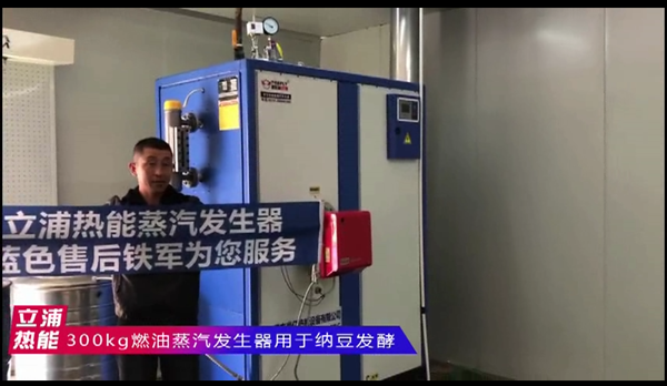 300kg燃油蒸汽发生器用于纳豆发酵.png